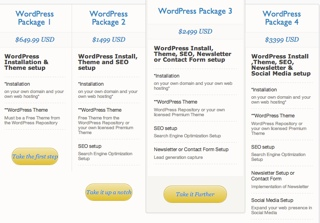 wordpress services - WordPress Installation Packages